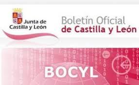 se convoca proceso selectivo para ingreso, por el sistema de acceso libre, en el Cuerpo de Arquitectos Técnicos y Aparejadores de la Administración de la Comunidad de Castilla y León.